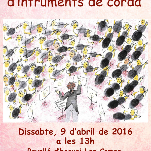 7a Trobada d'instruments de corda del Penedès a Igualada