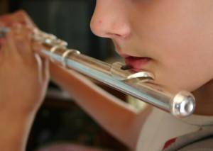 Oberta una borsa de treball de professor/a de flauta travessera per a l'Escola Municipal de Músicade Sant Joan de Vilatorrada