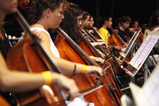 L'Escola Municipal de Música de Manlleu necessita incorporar professor/a de violoncel