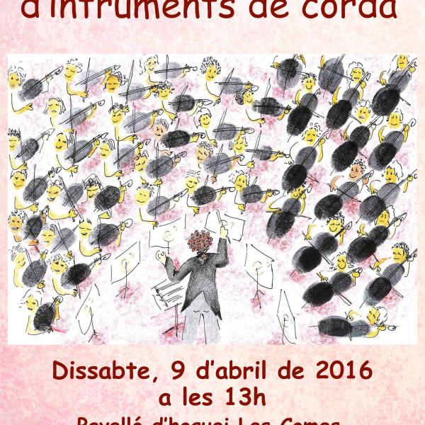 7a Trobada d'instruments de corda del Penedès a Igualada