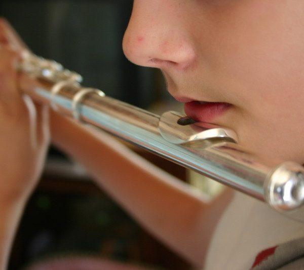 Procés selectiu de professor/a de flauta travessera a l'EMM de Sant Feliu de Guíxols.
