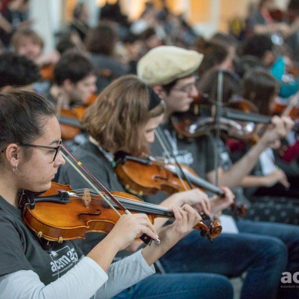Reunió informativa Fiddle per a les escoles: 7 d'octubre a les 11h per Zoom
