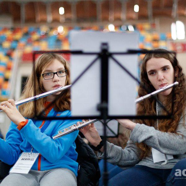 L'escola municipal de música i teatre de Sant Celoni busca professor/a de flauta travessera